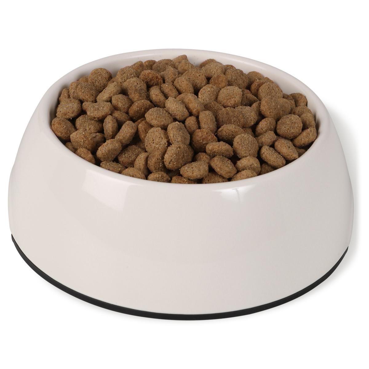 bosch bio senior hundefutter g nstig kaufen bei zooroyal. Black Bedroom Furniture Sets. Home Design Ideas