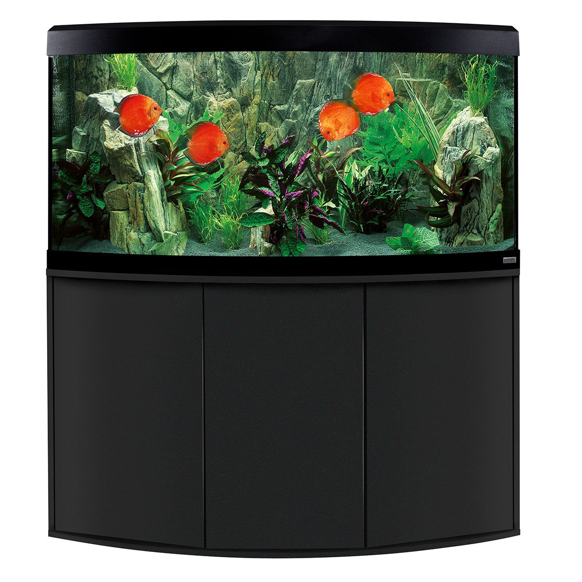 fluval panoramaaquarium mit led beleuchtung vicenza 260. Black Bedroom Furniture Sets. Home Design Ideas