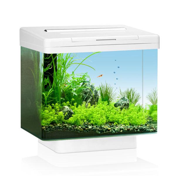 juwel nano aquarium g nstig kaufen bei zooroyal. Black Bedroom Furniture Sets. Home Design Ideas