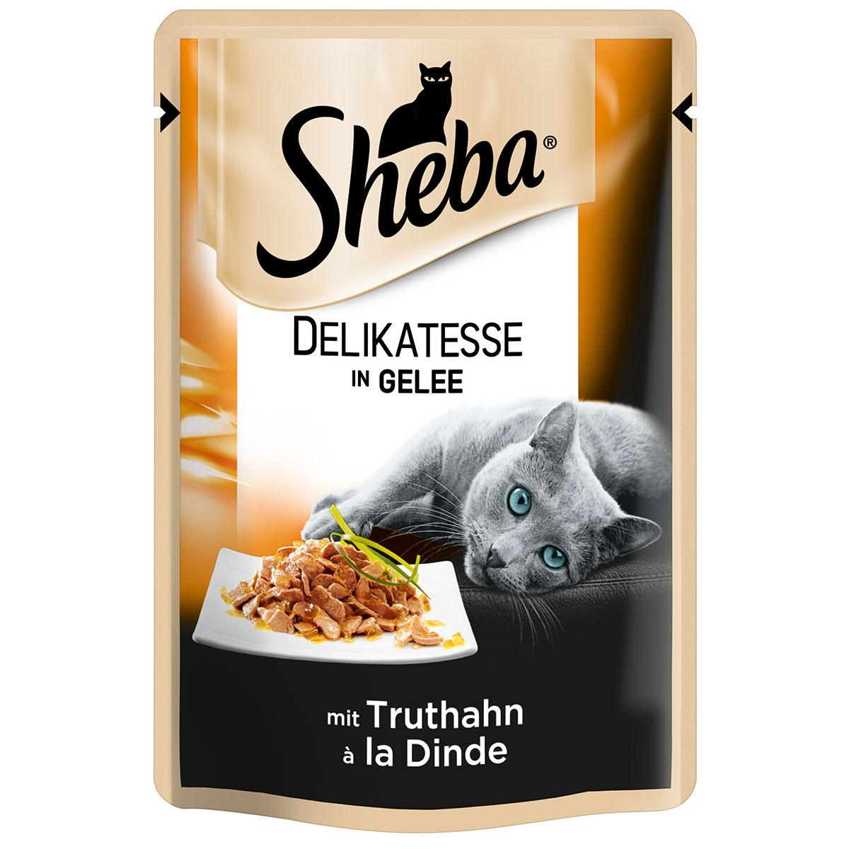 Berühmt Truthahn Zum Färben Zeitgenössisch - Entry Level Resume ...