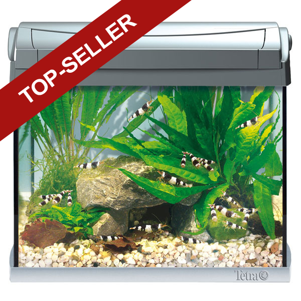 tetra aquaart led aquarium komplettset anthrazit bei zooroyal. Black Bedroom Furniture Sets. Home Design Ideas