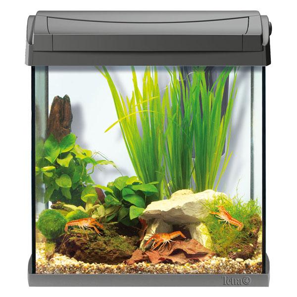 tetra aquaart led aquarium komplettset anthrazit bei zooroyal. Black Bedroom Furniture Sets. Home Design Ideas