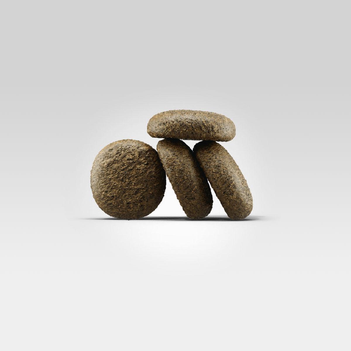 josera croquettes saumon pommes de terre pour chiens. Black Bedroom Furniture Sets. Home Design Ideas