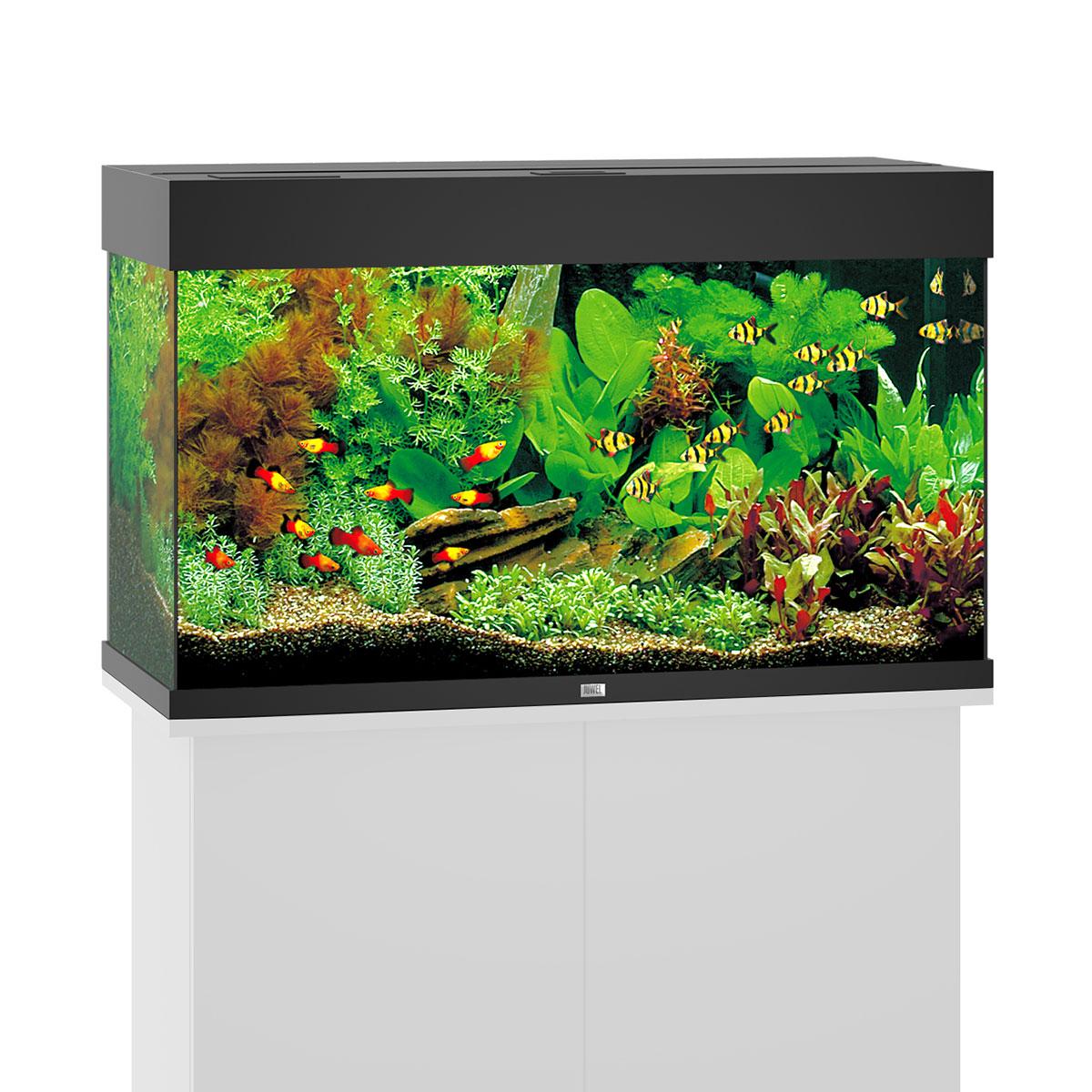 juwel aquarium becken g nstig kaufen bei zooroyal. Black Bedroom Furniture Sets. Home Design Ideas