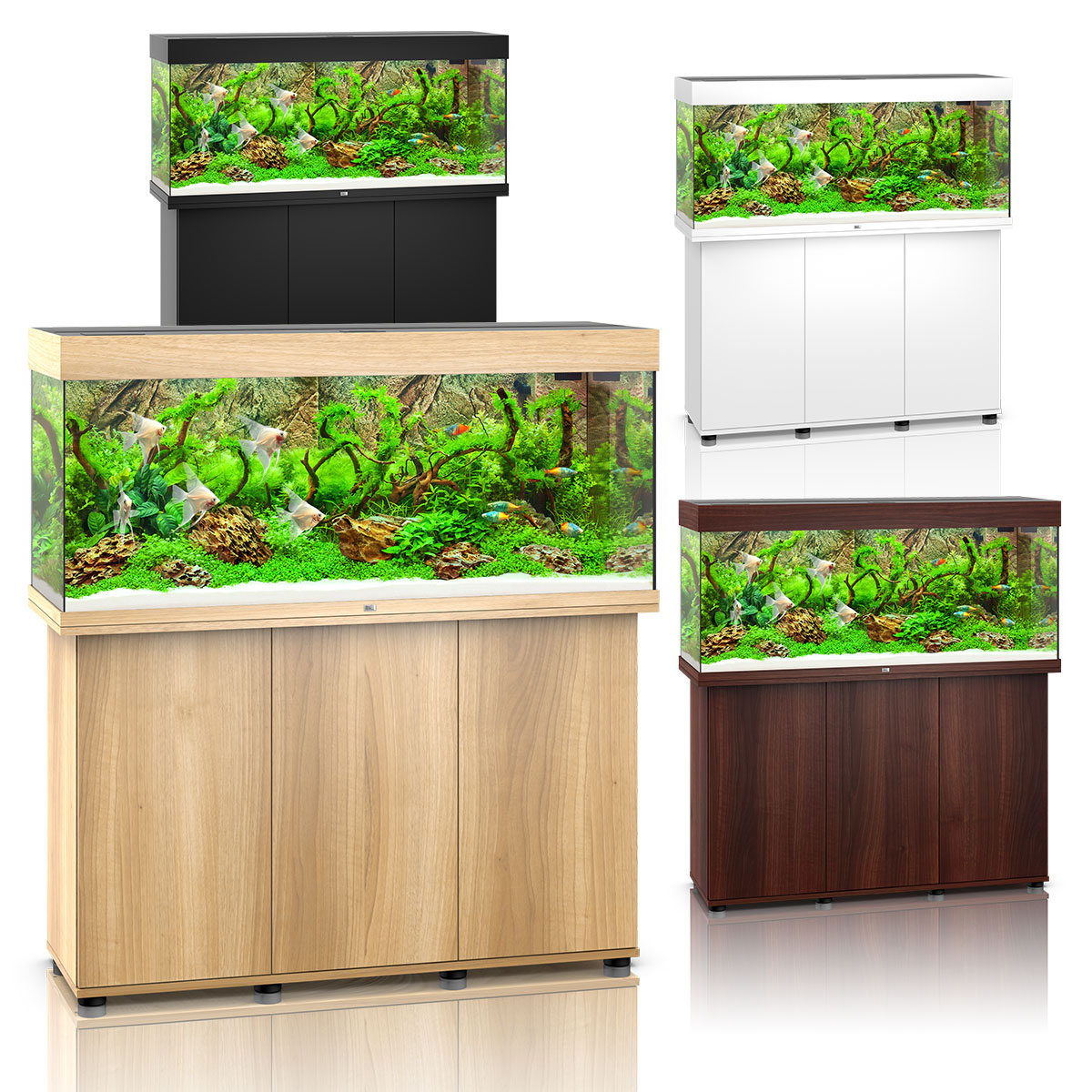 juwel rio 240 led komplett aquarium mit unterschrank sbx. Black Bedroom Furniture Sets. Home Design Ideas