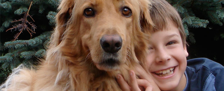 pedigree-hundefutter-image01
