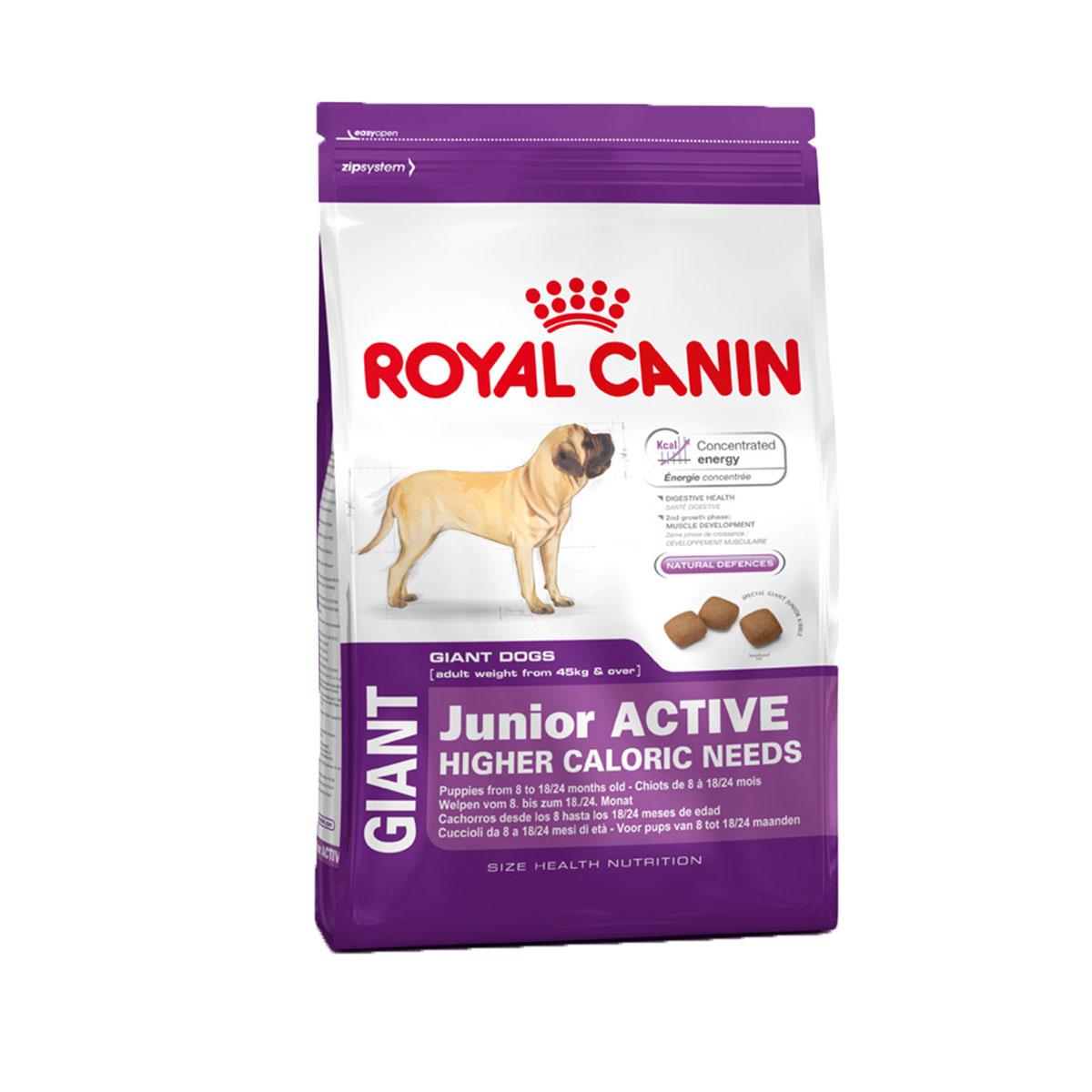royal canin giant junior active 15kg g nstig kaufen bei zooroyal. Black Bedroom Furniture Sets. Home Design Ideas
