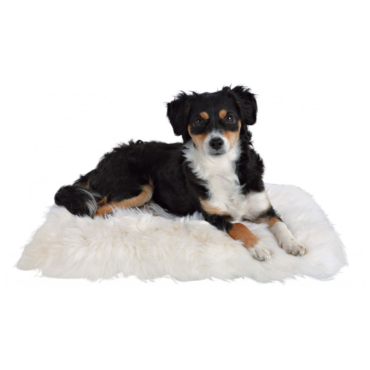 trixie schaffell kissen f r hunde und katzen kaufen bei zooroyal. Black Bedroom Furniture Sets. Home Design Ideas