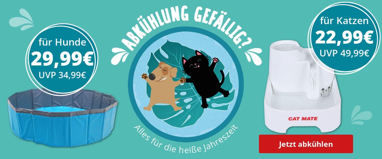 Abkühlung für Hund und Katz'