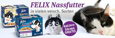 Felix Katzenkissen gratis