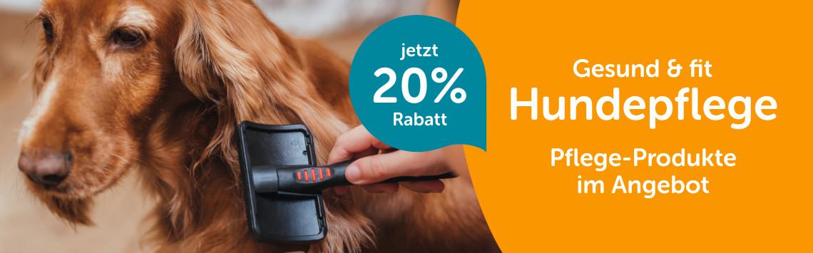 20% auf Hundepflege