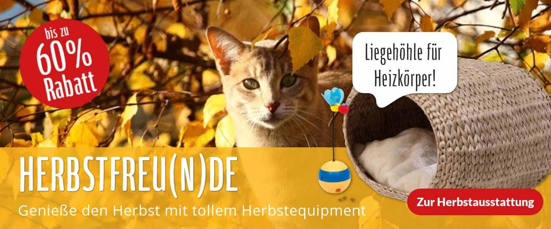 Herbstfreu(n)de - alles für die bunte Jahreszeit