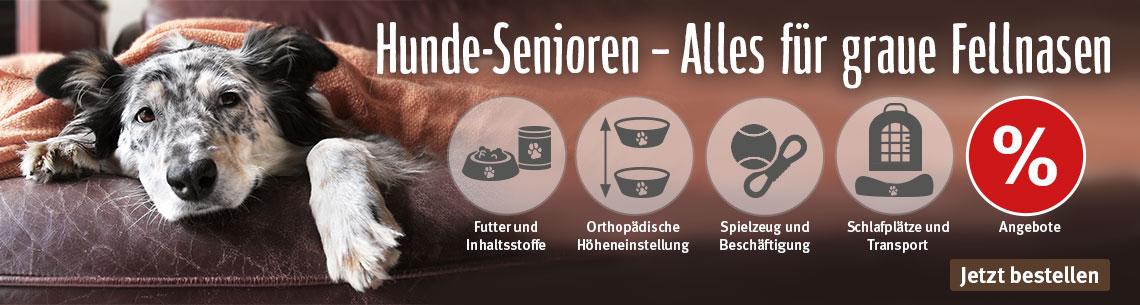 Hunde-Senioren - Alles für graue Fellnasen