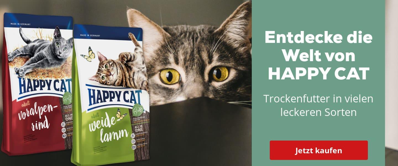 3468: Interquell Happy Cat