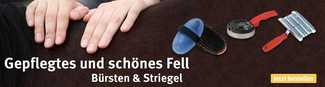 Gepflegtes und schönes Fell für Ihr Pferd, mit unseren Bürsten und Striegeln.