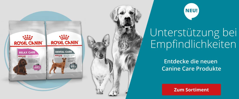 Unterstützt ihren Vierbeiner auch bei seiner Sensitivität: Entdecken Sie die neuen Canine Care Produkte von Royal Canin