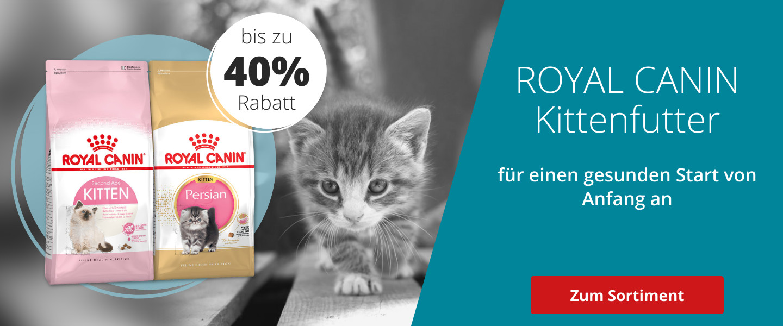 Bis zu 40% auf Royal Canin Kittenfutter