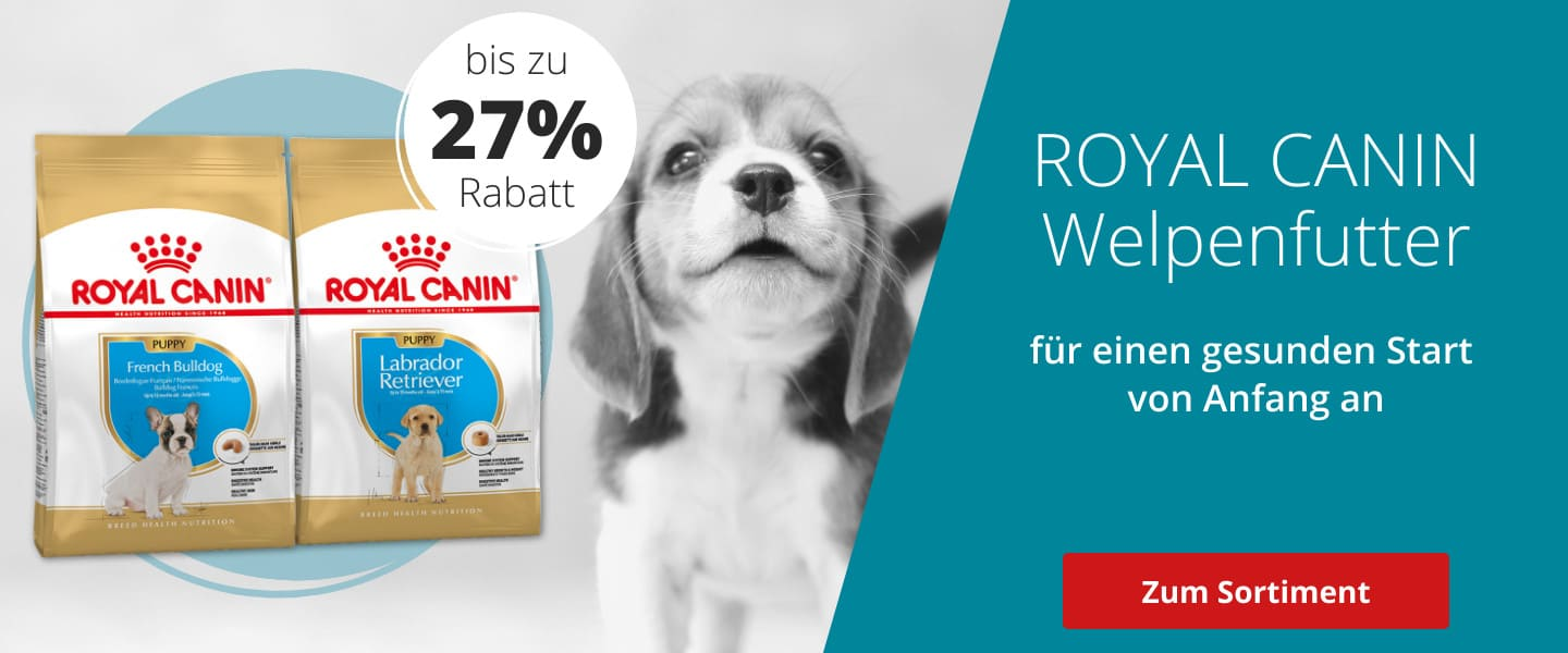 Royal Canin Puppy im Angebot