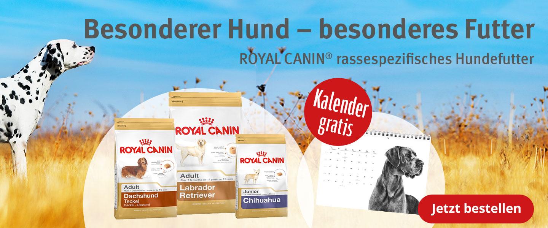 Gratis Kalender zu Royal Canin Futter