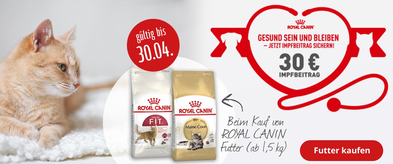 30€ Impfgutschein zu Royal Canin Trockenfutter
