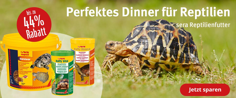 bis zu 44% Rabatt auf Sera Reptilienfutter