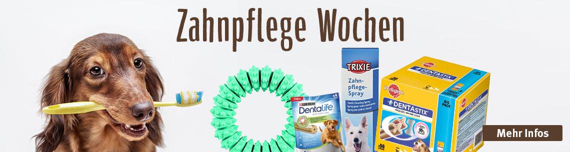 Zahnpflege Woche Hund