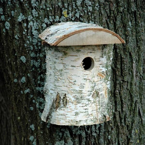 dobar naturbelassener Nistkasten aus Birkenholz