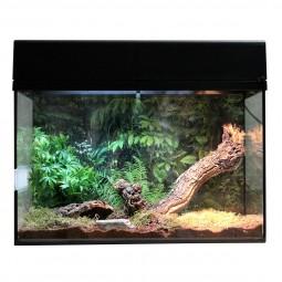 """Lucky Reptile Terrarium Starter Kit 50 cm """"Spinne + Skorpion"""""""