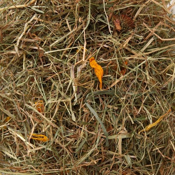 Naturhof Schröder Landwiesen Heu locker gestopft m. Sonnenblumen 500 g
