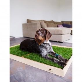 CARNILO Holzrahmen für Hundeklo XL