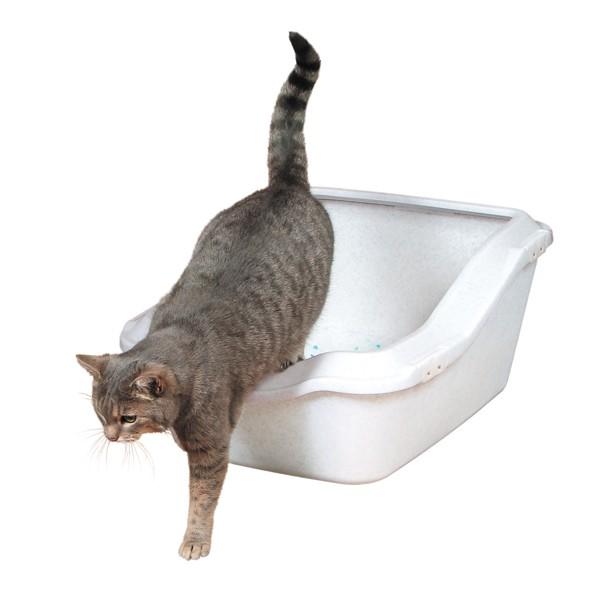 Trixie Katzentoilette Cleany Cat mit Rand