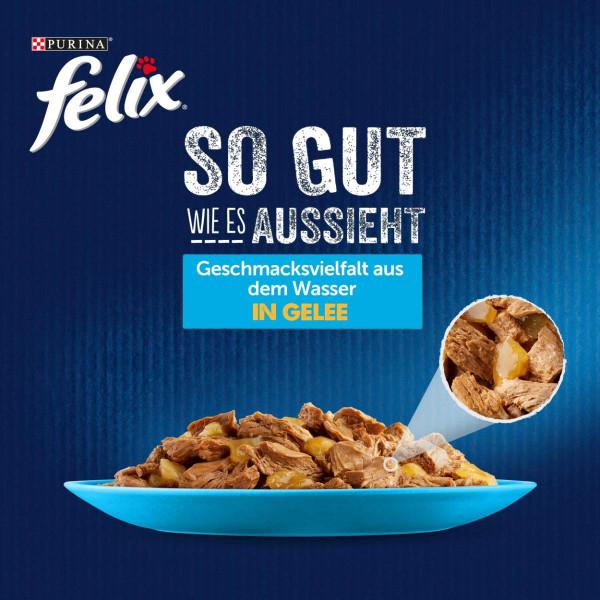 FELIX So gut wie es aussieht in Gelee Geschmacksvielfalt aus dem Wasser 24x85g