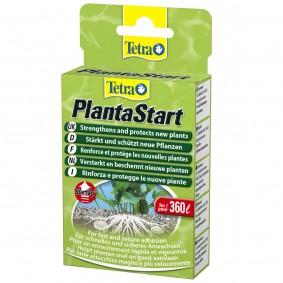 Tetra PlantaStart 12 Tabletten