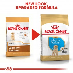ROYAL CANIN Labrador Retriever Puppy Welpenfutter trocken