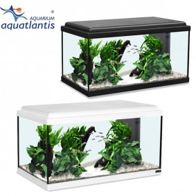 s wasseraquarium aquarien f r s wasser kaufen. Black Bedroom Furniture Sets. Home Design Ideas
