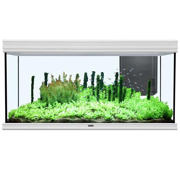 Aquatlantis Aquarium Fusion 120x50 Bio weiß