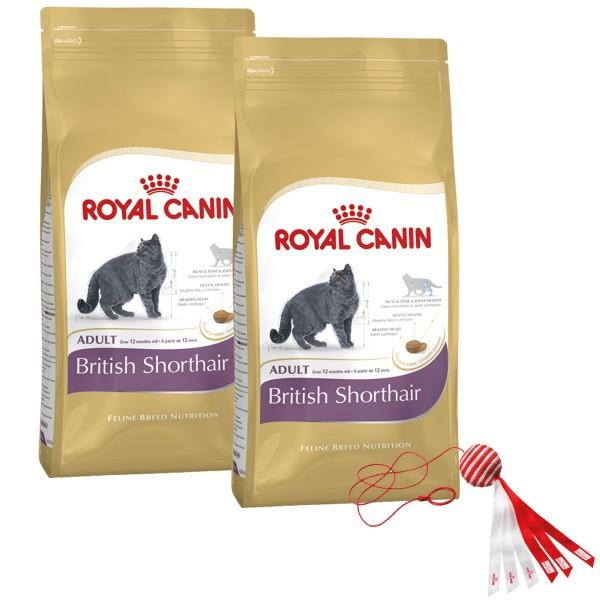 Royal Canin Katzenfutter British Shorthair Adult 2x10kg plus Spielzeug gratis