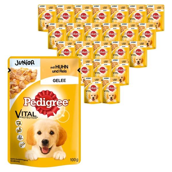 Pedigree Hundefutter Junior mit Huhn und Reis 24x100g