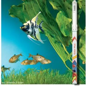 Dennerle Trocal T5 ColorPlus Tube fluorescent pour aquariums