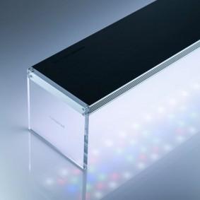 TWINSTAR LED LIGHT III Clear Type EC
