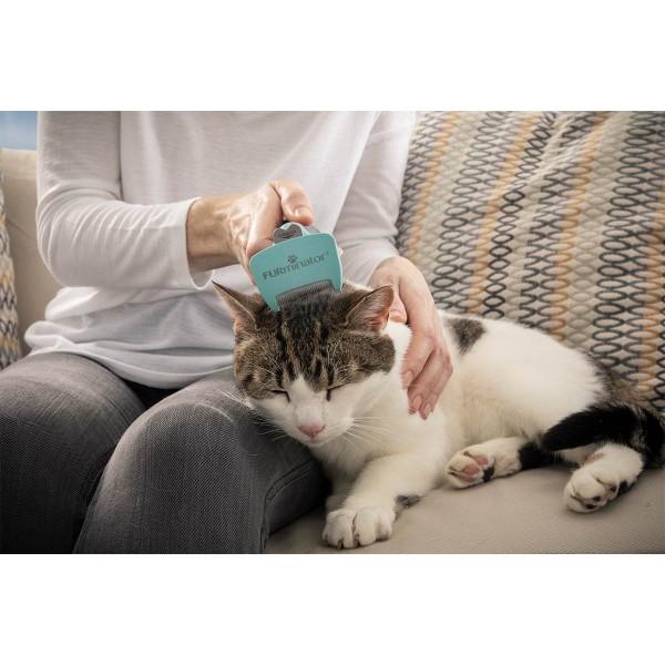 FURminator Katze Kurzhaar Bürste für Unterwolle