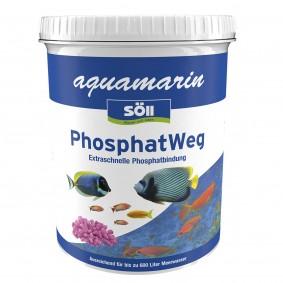 Söll aquamarin PhosphatWeg