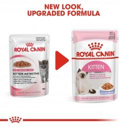ROYAL CANIN KITTEN Nassfutter in Gelee für Kätzchen 12x85g