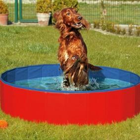 Karlie Doggy Pool Hundepool 80 x 20 cm inkl. Abdeckung