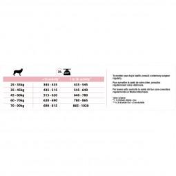 Pro Plan OPTIDERMA reich an Lachs für athletische Hunde mit sensibler Haut