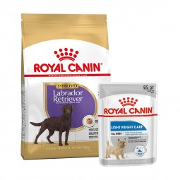 ROYAL CANIN Labrador Retriever Sterilised 12kg + LIGHT WEIGHT CARE Mousse 12x85g