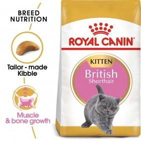 ROYAL CANIN British Shorthair suché krmivo pro koťata