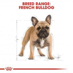 ROYAL CANIN French Bulldog Adult 3kg + Medium Adult in Soße 10x140g