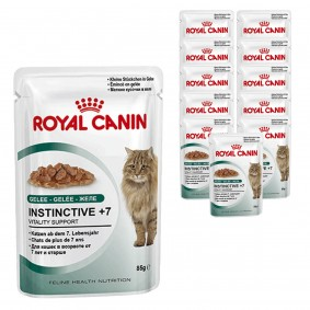 Royal Canin Katzenfutter Instinctive +7 in Gelee 12x85g