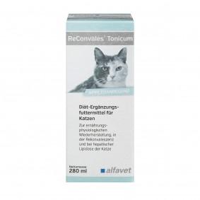 Alfavet ReConvales® Tonicum für Katzen